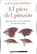 pico_pinzon