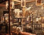 museo creacion 8