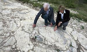 Paleontólogos aficionados miden las huellas encontradas en Plagne / Reuters